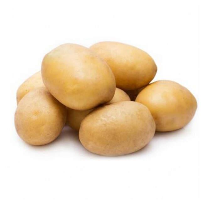 Patates Taze