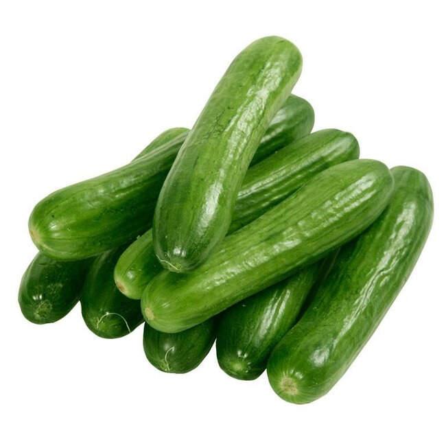 Salatalık Silor