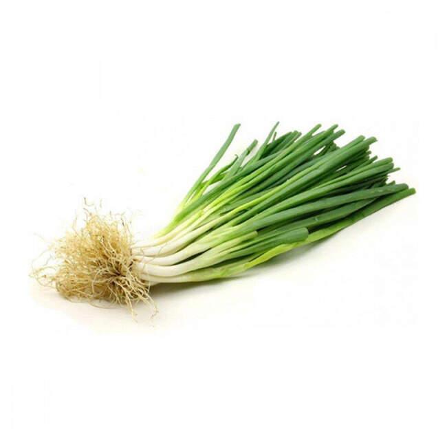 Yeşil Bağ Soğan