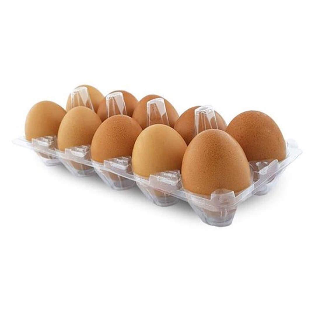 Özgür Gezen Tavuk Yumurtası 10'lu